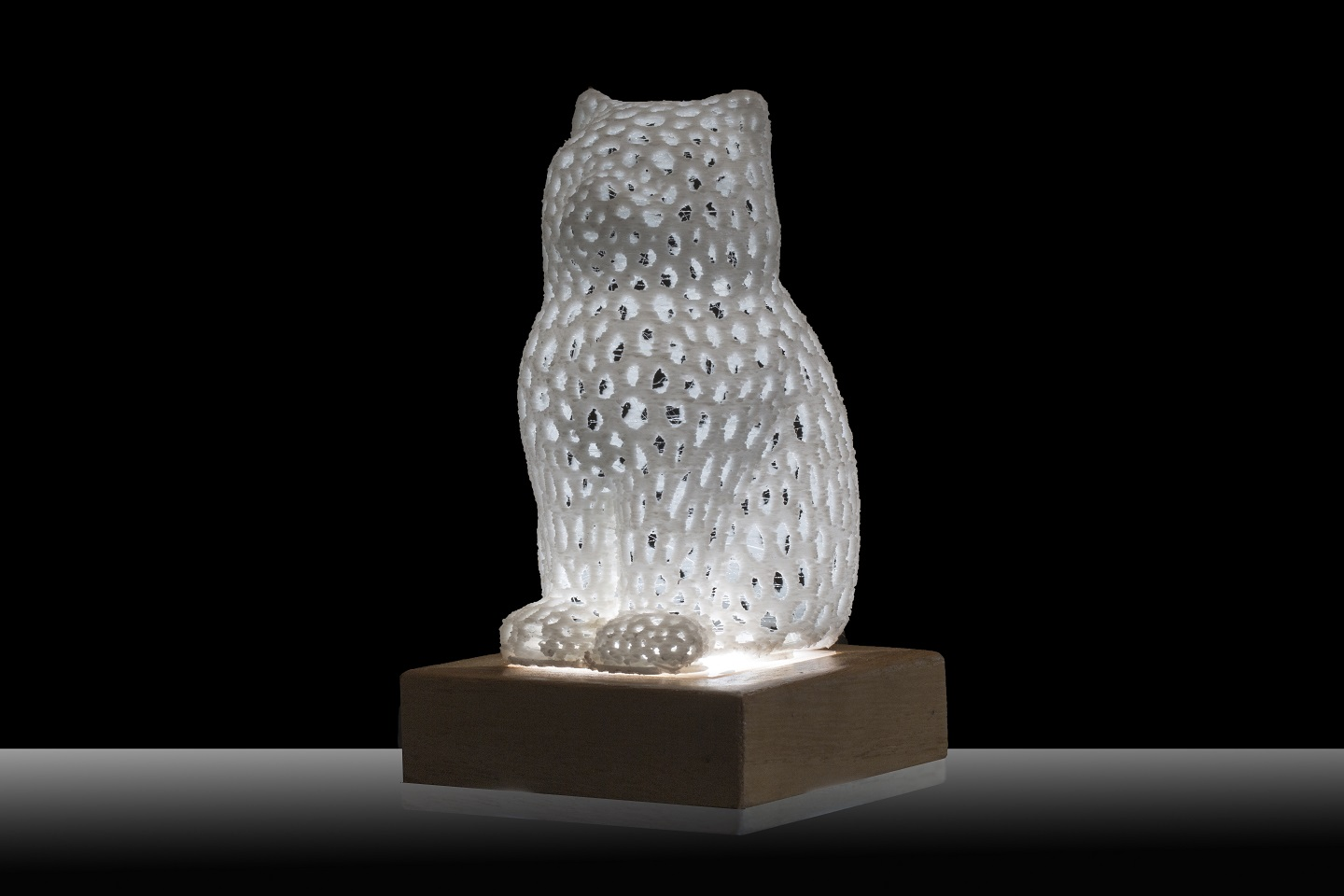 Art and Light LED through 3D Model - ARTELUX GATTO BIANCO
